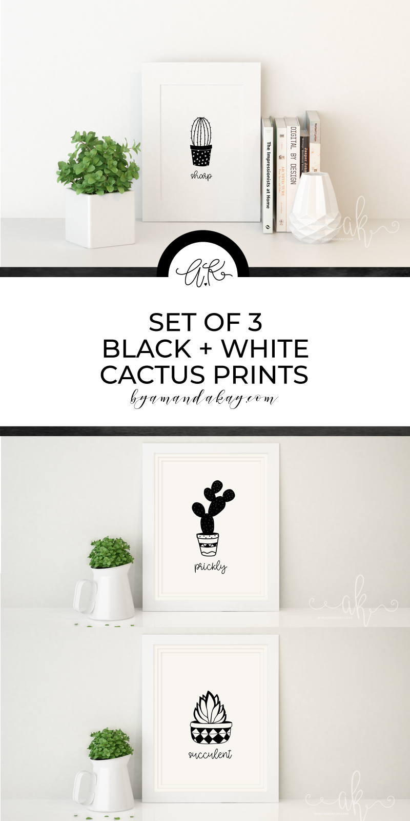 set of 3 cactus printables